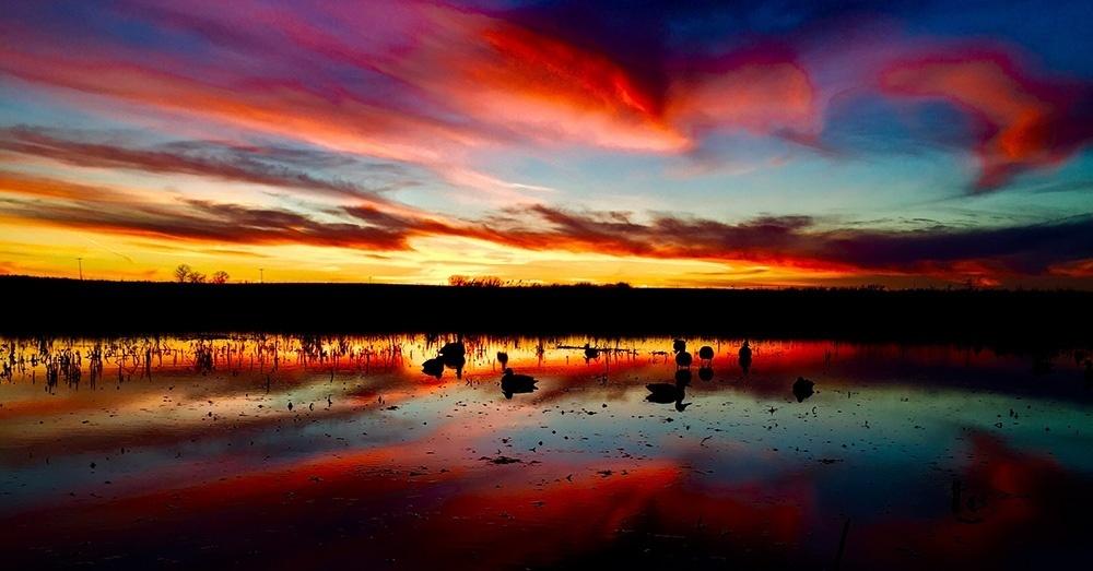 Affiliate Of The Week North Dakota Wildlife Federation