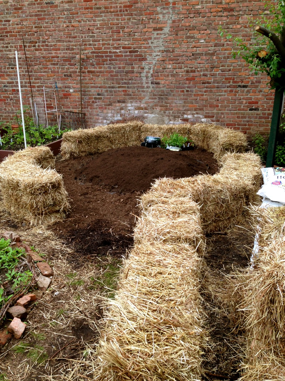 Straw Bale Gardening: The biodegradable alternative to raised beds ...
