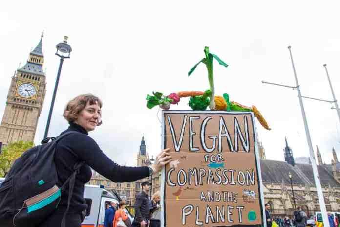 Vegan Gösteri