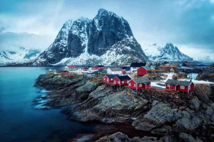 reine norveç