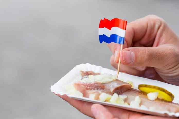 hollanda yemekleri