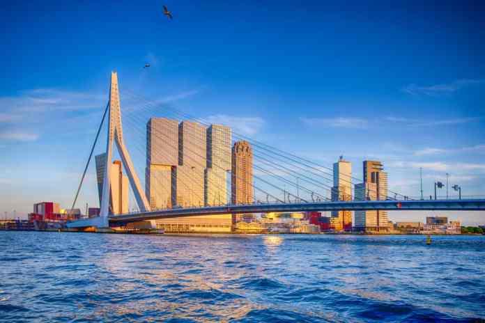 Erasmus Köprüsü Rotterdam