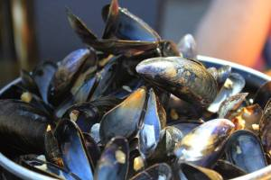 Image of fresh mussels