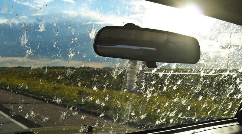 Descubre consejos para cuidar el estado del parabrisas en verano