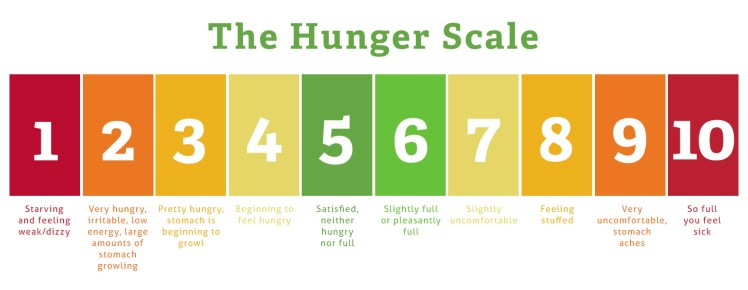 Image result for the hunger scale