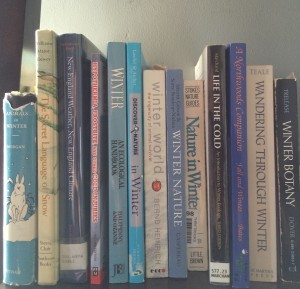 Winter ecology books on my shelves