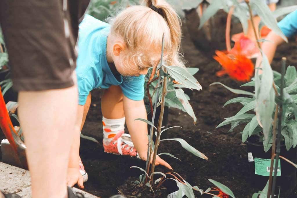 Como explicar a sustentabilidade aos mais novos? title