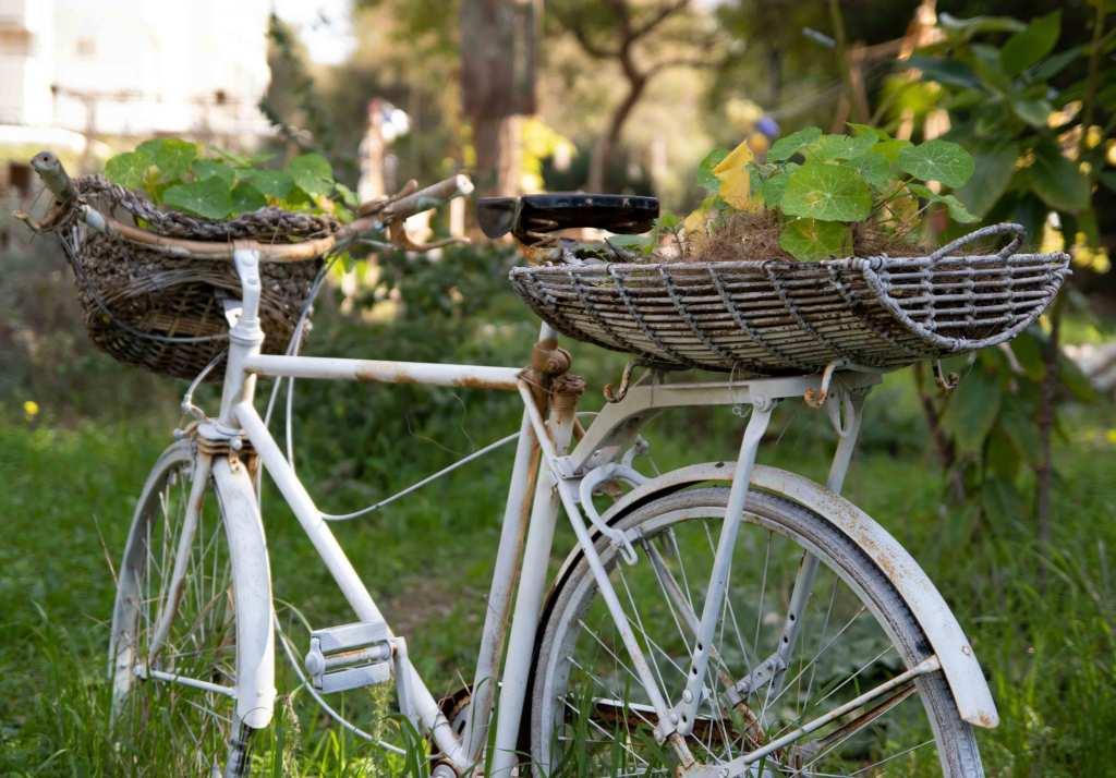 Da estrada para casa: reaproveita bicicletas antigas para decoração title