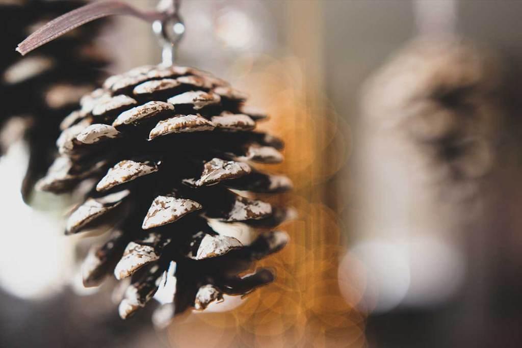 Pinhas para a decoração de natal