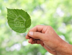 canstockphoto16143226green home