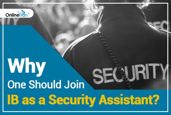 Why one should Join IB as a Security Assistant?