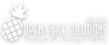 OpenFaceSolutions