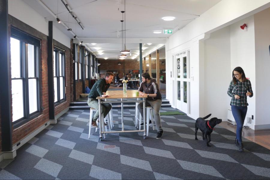 The Optimal Workshop Headquarters