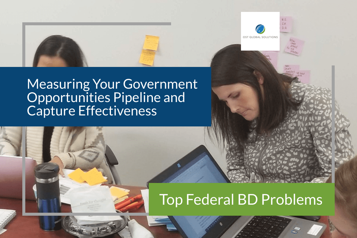 government-opportunities-review-process