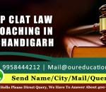 Top CLAT Law Coaching In Chandigarh