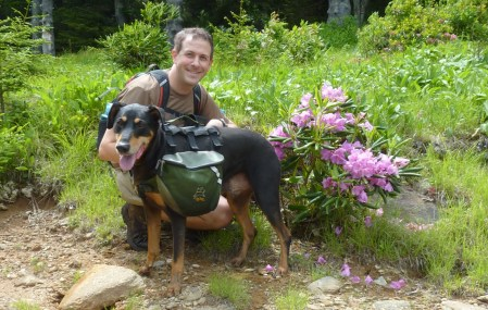 backpacking and dogs