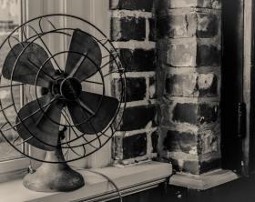 pexels-photo-195915