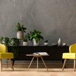 Combate el calor en tu casa con estas plantas