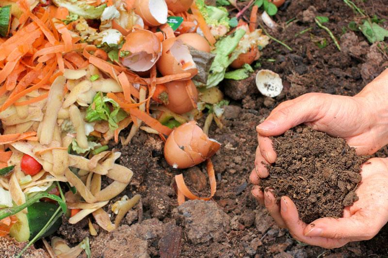 Cómo hacer compost casero?   Ingredientes que Suman