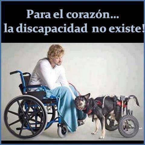 la discapacidad no existe