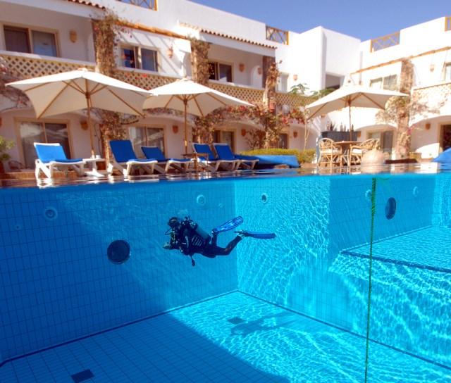 a diver a pool at camel resort