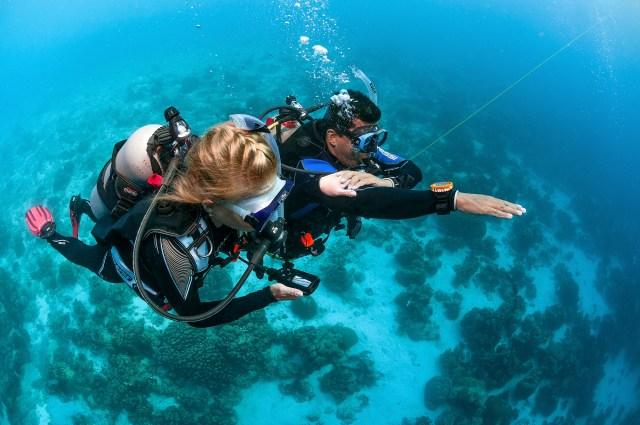 Bonaire - Dive Instructor - Signals