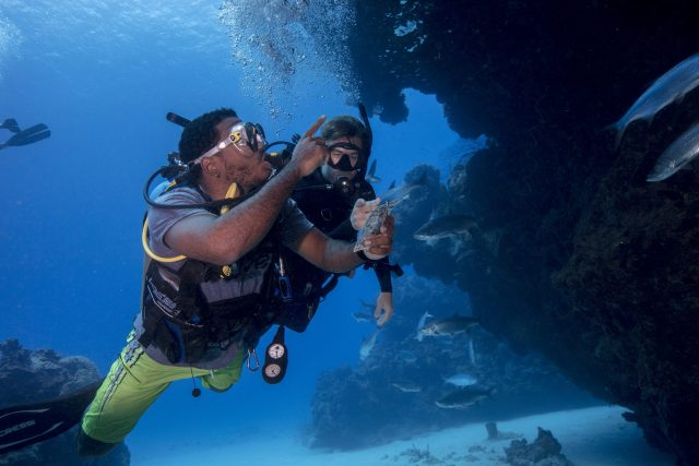 Diving Instructor Fish ID