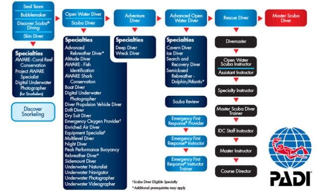 PADI certification levels chart