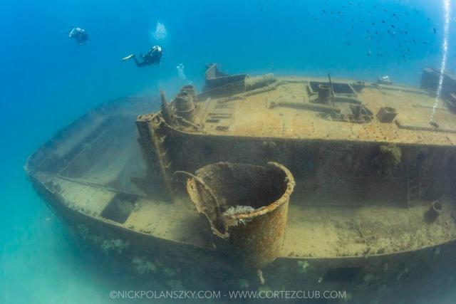 What it's Like to Dive in La Paz and Cabo San Lucas, Mexico Right Now