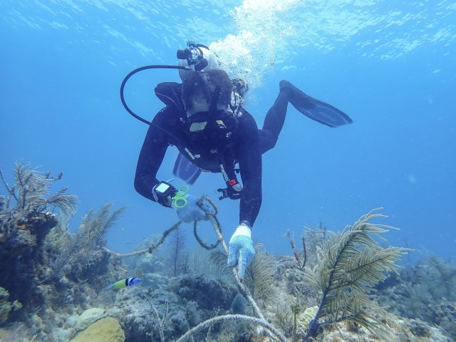 Fabien Cousteau removes rope from a Florida Keys reef.