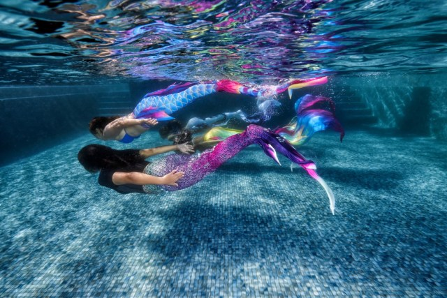 padi mermaid course