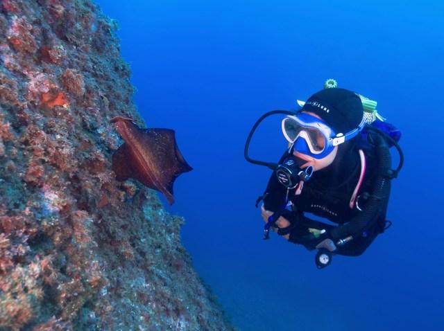 diving in costa brave spain