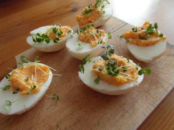 Vejce Mimosa, deviled eggs nebo-li Ruská vejce