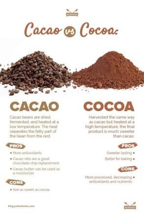 نتيجة بحث الصور عن RAW CACAO VS COCOA