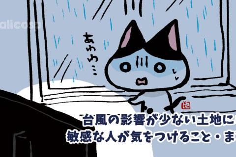 台風の影響が少ない土地にいる「敏感な人」が気をつけること