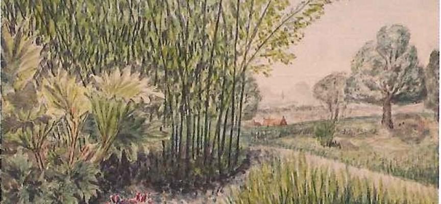 Jean Houzeau tenait son carnet de croquis. Collection privée de la famille Houzeau de Lehaie.