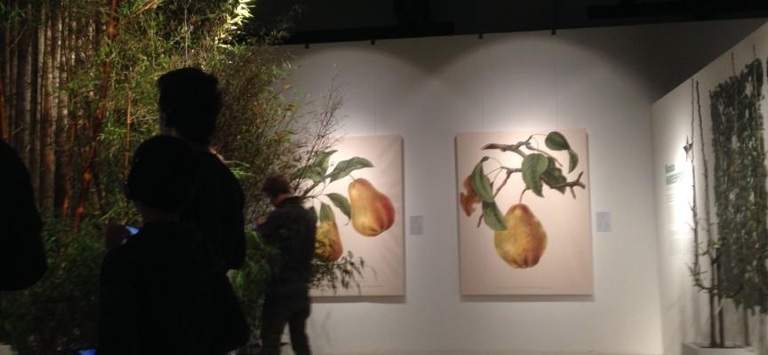 Scénographie de verdure dans la partie botanique de l'exposition Mons Superstar.