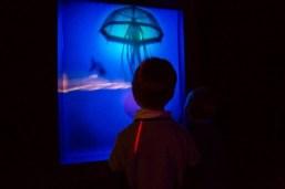 Enfants admirant la poésie des jeux d'ombres et de lumière dans l'exposition Lumière!