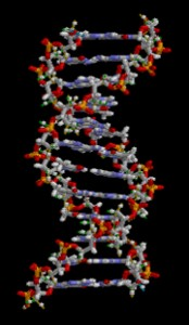 parkinson's genetics