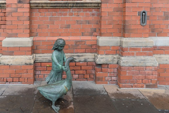 Belfacts: The legend of Alec the Goose – Belfast Times