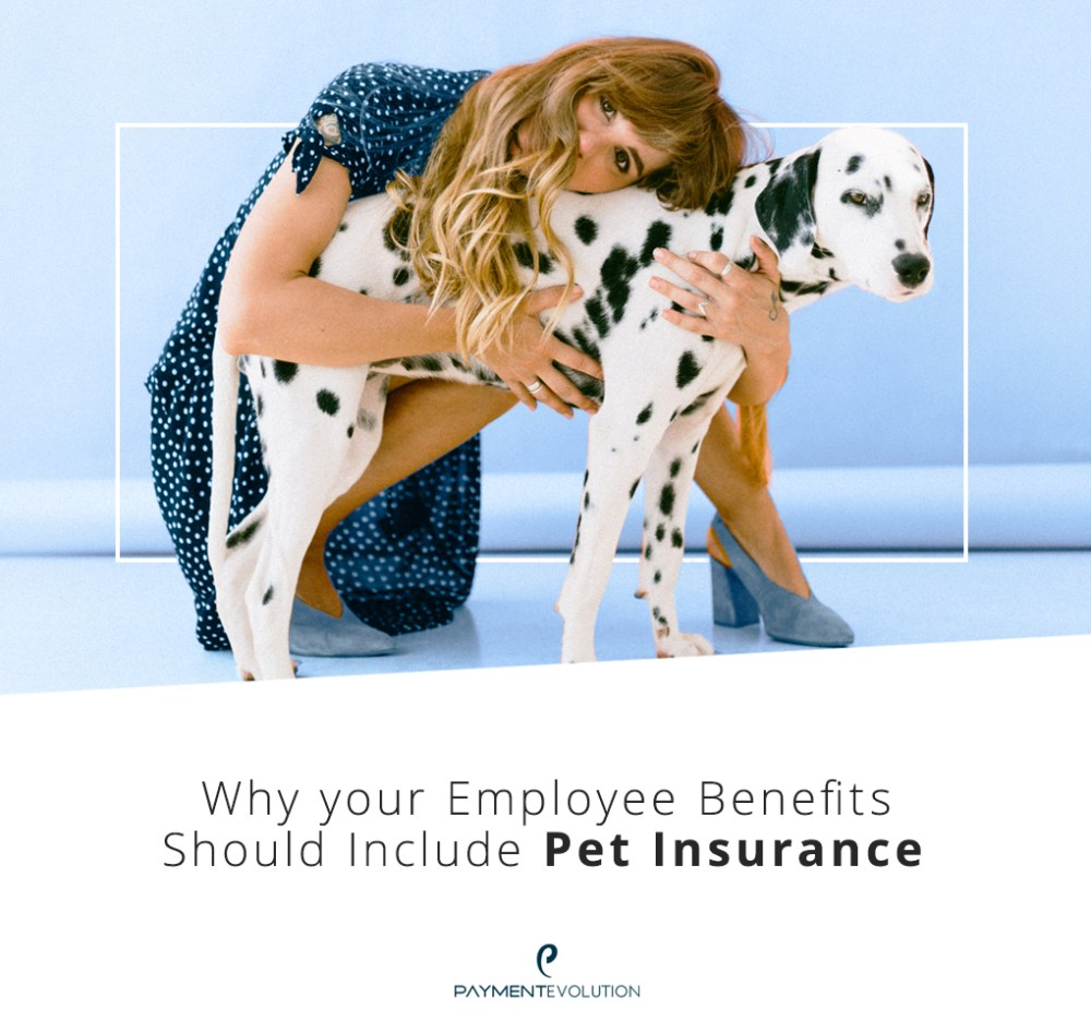 Why your employee benefits should include pet insurance