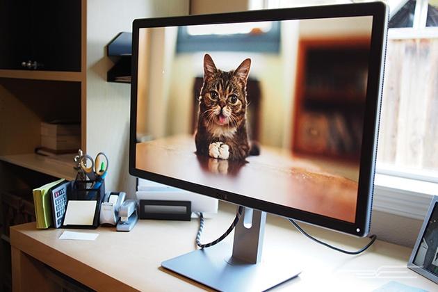 14-27-inch-monitor-Dell-P2715Q-630