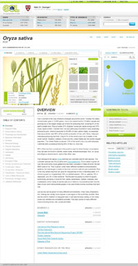 EOL Rice Page