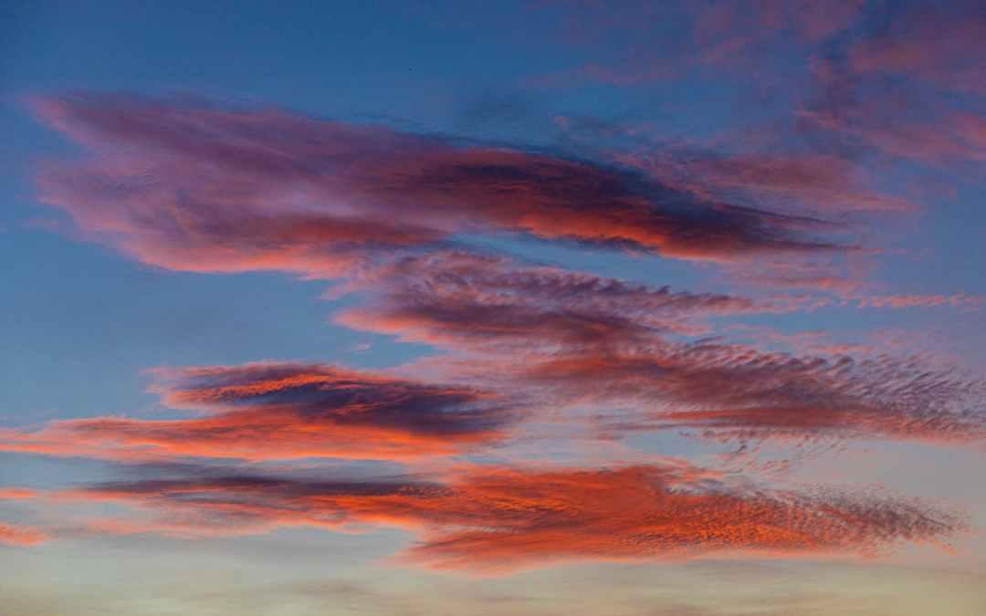 ¿Qué es software en la nube?