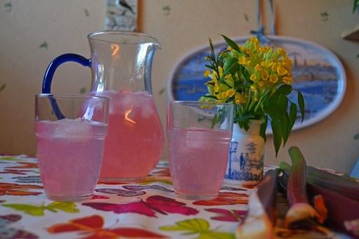 Rhubarb Iced Tea
