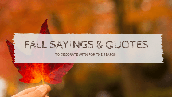 Fall Sayings & Quotes