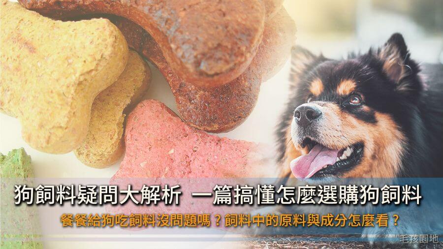《狗狗營養》狗飼料的選購建議、餵食疑問一篇搞懂