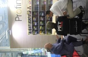 customer_petcity_dd_kong
