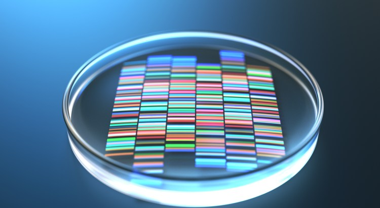 petri dish with DNA fingerprint