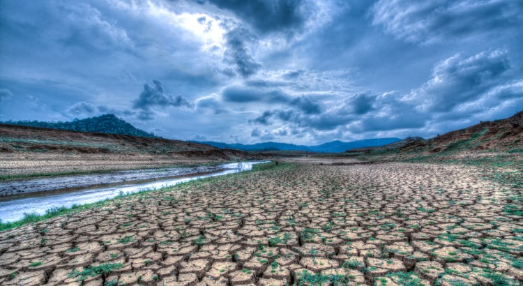 Landscape of dry and cracked land